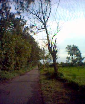 附近的自行車道