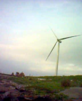 台電的大型風車