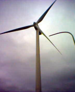 站在風車底下